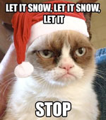 Grumpy Cat - Snow disrupts Dancing
